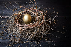 Golden egg in nest Stock Photo