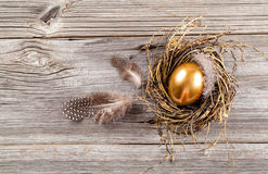 Golden egg in nest Royalty Free Stock Photo