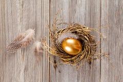 Golden egg in nest Royalty Free Stock Photo