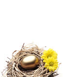 Golden Egg in the Nest with Flowers. On the White Background stock photo