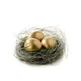 Golden Egg Nest Royalty Free Stock Photography