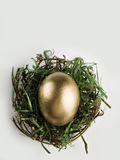 Golden egg in nest on gray. Single golden egg in dried out nest Royalty Free Stock Photos