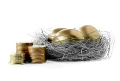 Golden Egg Nest III Stock Photos