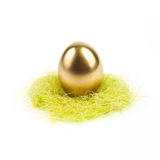 Golden egg in nest isolated on white Royalty Free Stock Image