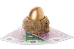 Golden egg in a nest with money Stock Photo