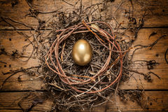 Golden egg in the nest Royalty Free Stock Photo