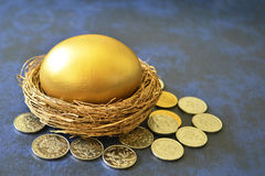Golden egg in nest surrounded by coins Royalty Free Stock Photo
