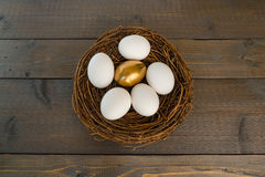 Golden Egg in Nest with White Eggs. Single Golden Egg in Nest with Several Regular White Eggs on Wood Background Stock Photo