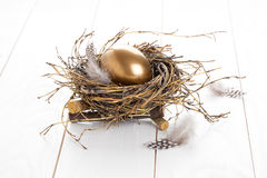 Golden egg in the nest Stock Photos