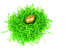 Golden egg nested in green decorative grass Stock Photo