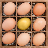 Golden egg among normal eggs in wooden box Royalty Free Stock Photography