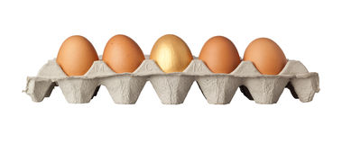 Golden egg. One golden egg in the middle of a tray of eggs isolated on white background Royalty Free Stock Photos