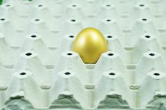 Golden egg in paper egg panel in concept Happy Easter Royalty Free Stock Photography