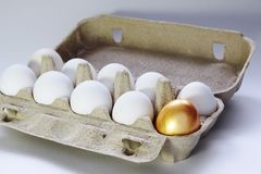 Golden egg in a paper packing Royalty Free Stock Photos