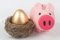 Golden egg, piggy bank and bird nest. A golden egg in the bird nest with a piggy bank next to them Royalty Free Stock Photos