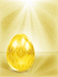 Golden egg in the rays. Stock Image