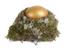 Golden egg in a real nest Royalty Free Stock Photos