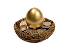 Golden Egg Standing In Nest Of Money. Beautiful golden nest egg surrounded by money.  Isolated on a white background with small shadow at the base Stock Image