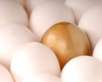 A golden egg surround by white eggs Royalty Free Stock Photography