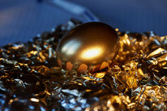 The Golden egg , a symbol of wealth and investment, rests on the foil. Brilliant picture. The Golden egg , a symbol of wealth and investment, rests on the foil Royalty Free Stock Images