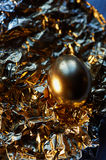 The Golden egg , a symbol of wealth and investment, rests on the foil. Brilliant picture. The Golden egg , a symbol of wealth and investment, rests on the foil Royalty Free Stock Photos