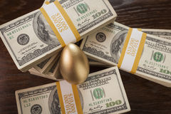Golden Egg and Thousands of Dollars Surrounding Stock Photography