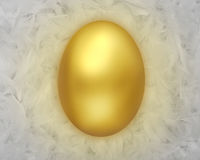Golden Egg on Feathers Royalty Free Stock Photos