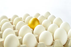 Surprise - golden egg Royalty Free Stock Photography