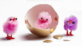 Free Golden Egg With Chicks Royalty Free Stock Photos - 67854488