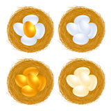Golden eggs Royalty Free Stock Photos