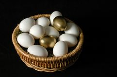 The Golden Eggs. Two golden eggs among white eggs royalty free stock photos