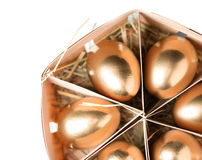 Golden eggs in a basket Stock Images