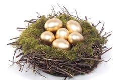 Golden eggs in bird nest over white Royalty Free Stock Images