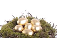 Golden eggs in bird nest over white Royalty Free Stock Photos