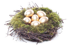 Golden eggs in bird nest over white Stock Photo