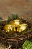 Golden eggs Stock Images