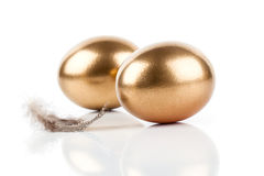 Golden eggs and feather Royalty Free Stock Photo
