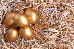 Golden eggs Stock Photography