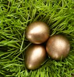 Golden eggs are in the grass Royalty Free Stock Photo