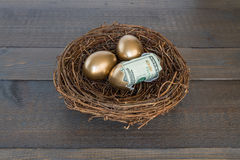 Free Golden Eggs In Nest With One Egg Cracked Open With Money Stock Image - 98461031