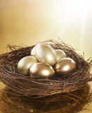 Golden Eggs in a Nest. Golden Eggs Inside a Nest. Business Concept Royalty Free Stock Photo