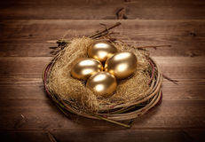 Golden eggs in the nest Royalty Free Stock Photos