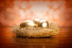 Golden eggs in the nest Royalty Free Stock Images