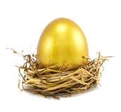 Golden eggs in nest. On white stock photography