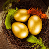 Golden eggs in the nest Stock Photos