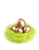 Golden eggs are in the nest of green sisal fibre. Isolated on white royalty free stock image