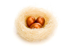 Golden eggs in nest Royalty Free Stock Photos