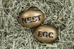 Golden Eggs in Nest of Shredded US Dollars Royalty Free Stock Images
