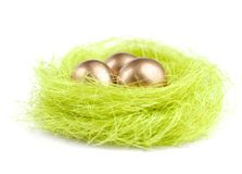 Golden eggs are in the nest of sisal material Stock Images