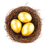 Golden eggs in nest Stock Photos